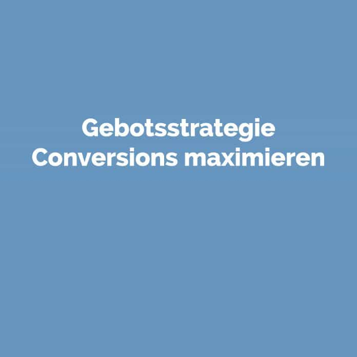 Gebotsstrategie Conversions maximieren | perfecttraffic.de