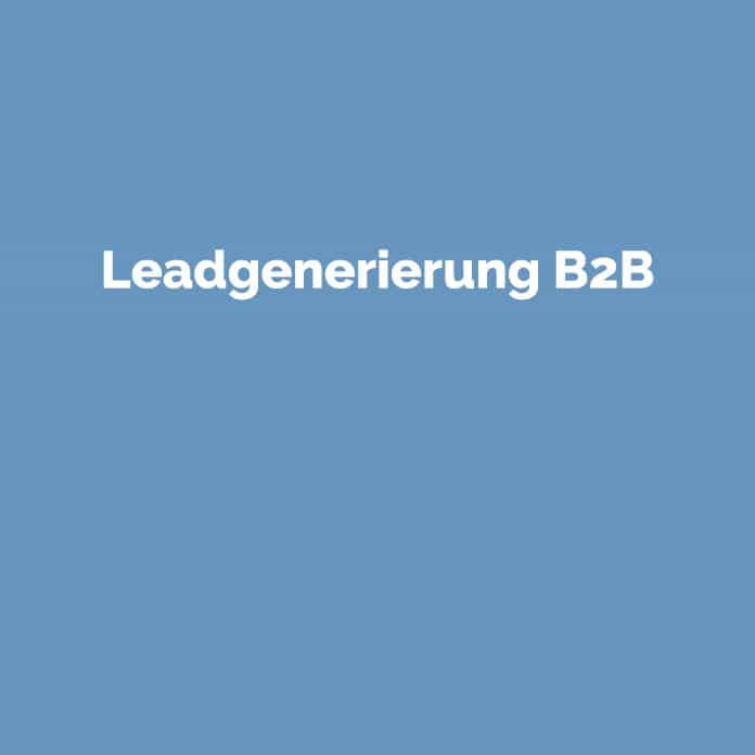 Leadgenerierung B2B | Online Glossar | perfecttraffic.de