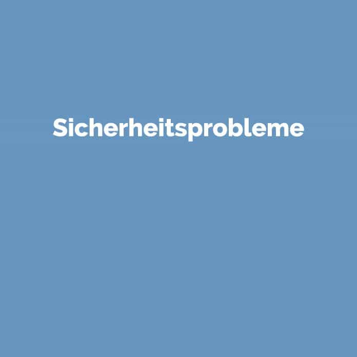 Sicherheitsprobleme | Online Glossar | perfecttraffic.de