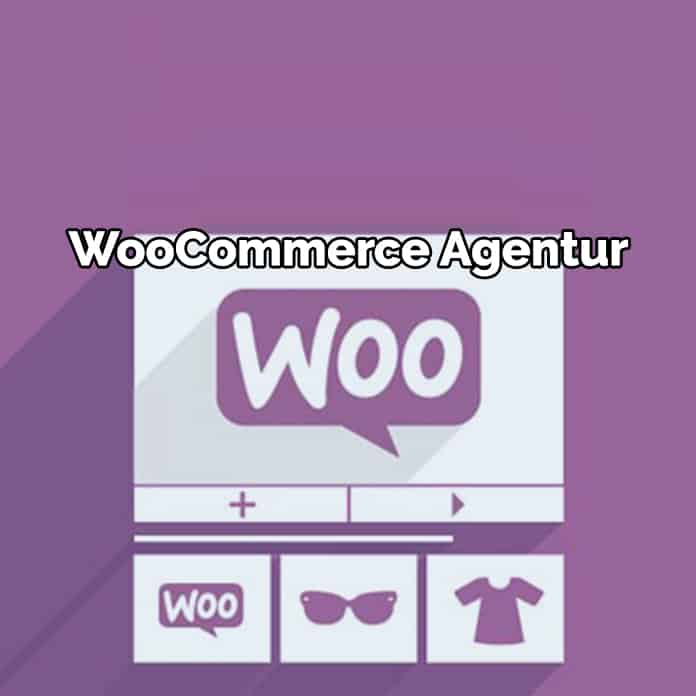 Top 10 WooCommerce E-Commerce Plugins
