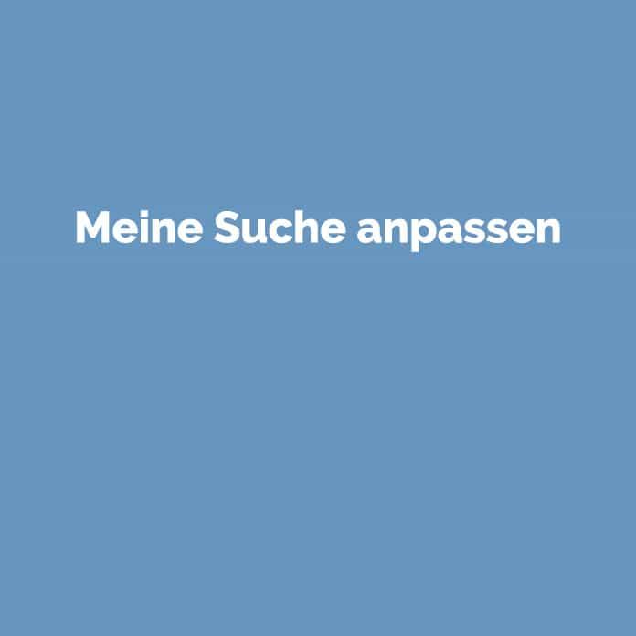 Meine Suche anpassen | Online Glossar | perfecttraffic.de
